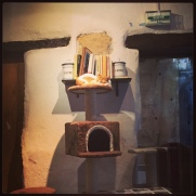 Café des Chats @LeBlogdeNatte
