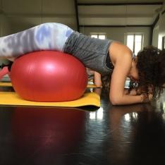 le blog de natte - postural ball